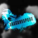Dragon Vapour Logo